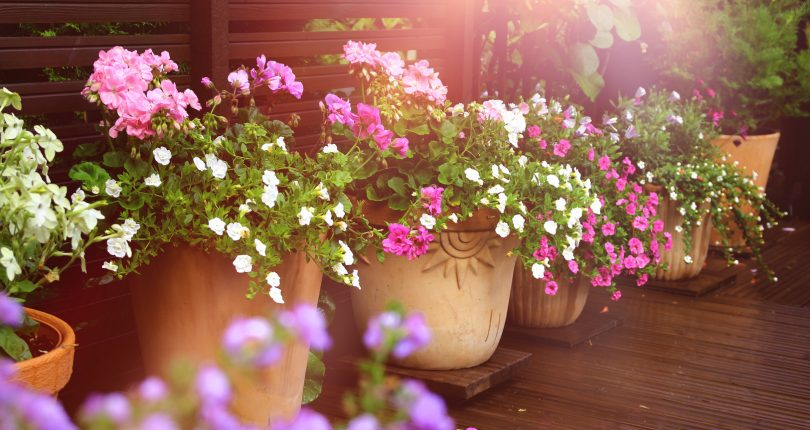 8 ways to prettify your patio for the summer
